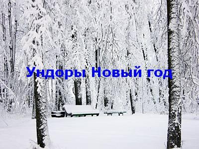 недорогой санаторий на новый год в россии